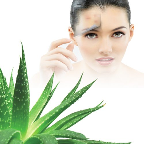 Best aloe vera gel for your skin in India